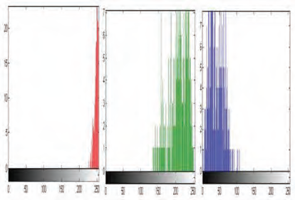 Fig. 7 Histograms of R, G and B channels